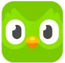 Duolingoのレベルとは?約2年使ってわかったこと!